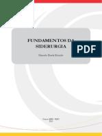 FundSiderurgia EAD 2013
