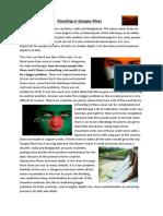 flooding Ganges River-2013.docx