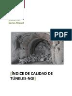 Clasificación Geomecánica NGI