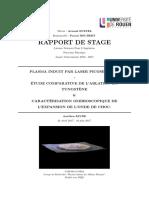 RAPPORT DE STAGE L3 (Aurélien FAVRE)