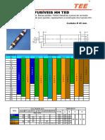 TEE_Fusiveis_HH_TED.pdf