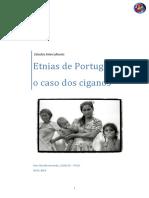 Ana Claudia_Etnias de Portugal o Caso Dos Ciganos