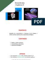 Biomoleculas Organicas II