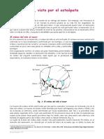 El-nacimiento.pdf