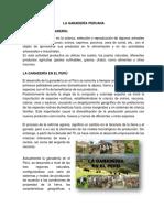 Conta Agricola