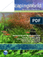 aquascaping pdf.pdf