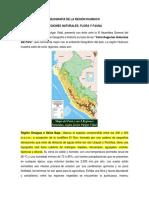 Geografía de La Región Huánuco