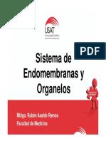 Endomembranas y Organelos 2015 3