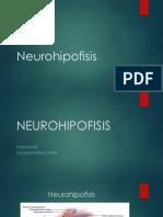 Neurohipofisis.pptx