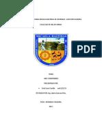 UNIVERSIDAD NACIONAL MICAELA BASTIDAS DE APURIMA1 servicios auxiliares mineros.docx