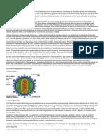 Sindrome de Inmunodeficiencia Adquirida e Doencas Associadas