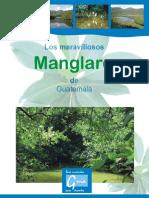 Los Maravillosos Manglares Guatemala