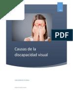 Causas de La Discapacidad Visual1