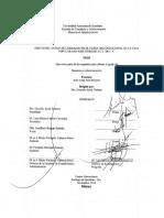Tesis Maestria México Efecto del estilo de liderazgo en el clima organizacional de la caja populkar.pdf