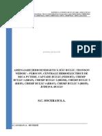 Microhidrocentrala 2 Soceram