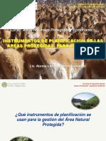 Tema v.B. Instrumentos de Planficacion en ANP