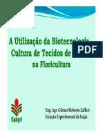 cultivo de tejidos en portugues