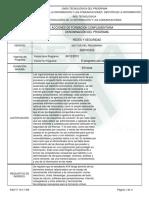 DISEÑO DELPROGRAMA REDES.pdf