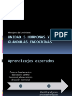Unidad 5 Hormonas y Glndulas Endocrinas n m2 1196176206136329 3