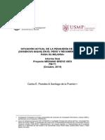 situacion de la pota.pdf