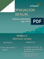 PP.SEMILLA.1.pdf