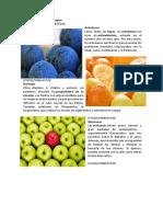 Las 10 frutas más saludables.docx