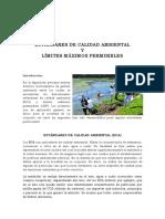 ECA Y LPM - Impacto Ambiental