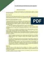 Principios Basicos Del Sistema de Informacion en Los Negocios Viviana