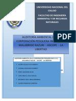 Auditoría Ambiental en Una Industria Cope Inca Final (1)