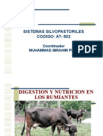 Clase2 Digestion Rumiantes