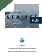 Sea Ice Guide