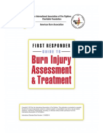 Burn Injury Assessment and Treatment Text
