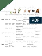 Propriedades de Ervas e Especiarias