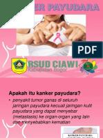 Presentation Penyuluhan Kanker Payudara