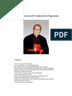 Mil y Un Pasos en El Camino Esperanza - Francisco Xavier Nguyen Van Thuan