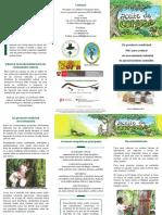 giz2014-sp-aceite-de-copaiba-peru-1.pdf