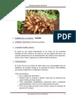 NOMBRE DE LA PLANTA.docx