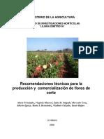 rparaflores.pdf