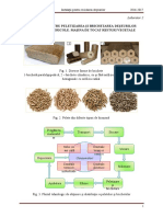 L 2 - Peletizarea Biomasei_scheme