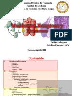 Membranasreceptoresyhormonas Fabinrodrguez 140107183656 Phpapp01