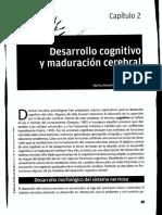 Desarrollo Cognitivo y Maduracion Cerebral Cap 2112