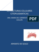 ESTRUCTURAS_CELULARES_CITOPLASMATICAS