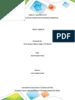 TAREA 3 Componente Practico GRUPO 358038_19 Oscar Calderon (1)