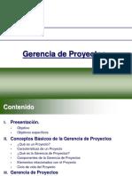 gerenciadeproyectos-completa