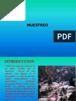Tecnicas de Muestreo.ppt
