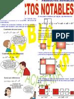Productos Notables RUBIÑOS.pdf