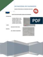 163458928-Proyecto-Chamis.pdf
