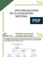 Principio Precautorio Patricia Tovar (1)