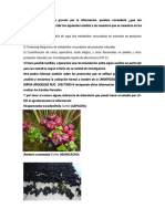 Archivo Material Vegetal