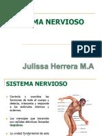 3.Sistema Nervioso